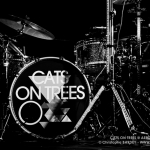 20141017_CBY_7310_Cats_On_Trees