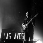 20141213__CBY4348_Las_Aves