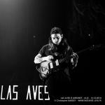 20141213__CBY4370_Las_Aves