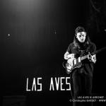 20141213__CBY4372_Las_Aves